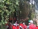 """Hàng trăm người tham gia trồng rừng """"Vì một Việt Nam xanh"""""""