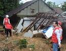 EU hỗ trợ 200.000 euro cho nạn nhân bão Damrey tại Việt Nam