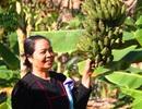 Rời chốn phồn hoa vào rừng nuôi heo thu tiền tỷ