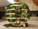 """Thật tuyệt vời khi có thể tự lắp đặt một """"Khu vườn trong nhà"""""""