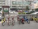 TPHCM lập đề án thí điểm chia sẻ xe đạp công cộng ở khu trung tâm