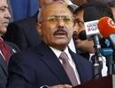 Cựu Tổng thống Yemen bị phiến quân sát hại
