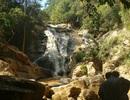 Vụ tai nạn tại  thác Hang Cọp: Tạm đình chỉ hoạt động doanh nghiệp Giấc Mơ Vàng