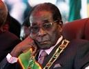 Đảng cầm quyền Zimbabwe họp khẩn quyết định số phận Tổng thống Mugabe