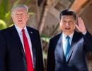 Ông Trump khen đề xuất bỏ giới hạn hai nhiệm kỳ với chủ tịch nước của Trung Quốc