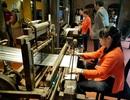 Tìm giải pháp khôi phục nghề trồng dâu nuôi tằm, ươm tơ dệt lụa