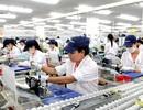 """""""Hệ luỵ"""" BOT, """"kinh tế gia công, xuất khẩu hộ"""" là thách thức Việt Nam 2018"""