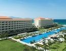 Sheraton Grand Danang Resort nâng tầm hội họp và sự kiện
