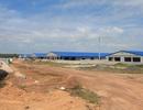 """Trại heo """"khủng"""" đang thành hình gần nguồn cấp nước sạch cho TPHCM và Đồng Nai"""
