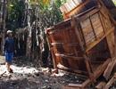 """Rừng """"chảy máu"""", chòi canh rừng bị phá"""