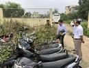 Kiểm tra việc xử lý phương tiện giao thông bị tạm giữ tại Đà Nẵng