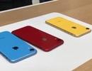 """iPhone XR """"cháy hàng"""", khách Việt vẫn không quan tâm vì đắt"""