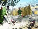 Bắt 54 đối tượng sát phạt tại sới gà trên khu đất vắng