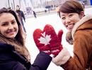 Chương trình STI: Định cư bằng con đường du học Canada