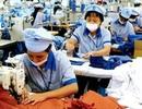 Hà Nội: Thu 315 tỉ đồng nợ bảo hiểm xã hội