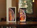 Sau một tháng mong ngóng, khách hàng ồ ạt đặt trước iPhone mới trên Thế Giới Di Động