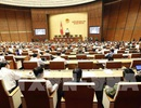 Kỳ họp thứ 6, Quốc hội khóa XIV: Quyết liệt tái cơ cấu ngành công nghiệp - thương mại