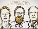 Nobel Hóa học 2018 gọi tên hai dự án nghiên cứu về tiến hóa