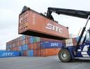 """Doanh nghiệp xe tải chờ 3 tháng không xin được phù hiệu """"xe tải"""" vì... cán bộ!"""