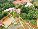 Chỉ đạo tháo dỡ khu sinh thái trái phép trong Khu di tích Đền Hùng