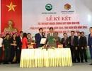 Văn Phú - Invest tài trợ quy hoạch chung xây dựng khu vực phía Nam huyện Hoành Bồ (Quảng Ninh)