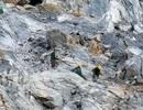 Quảng Bình: Báo động tình trạng tai nạn lao động gia tăng tại các mỏ đá