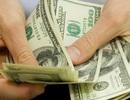 Tuyển dụng Tổng giám đốc lương khởi điểm 2.300 USD