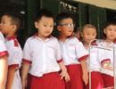 TPHCM: Hơn 84% phụ huynh đồng ý đề án Sữa học đường
