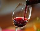 """Mua vang chính hãng ở đâu, giữa thị trường rượu vang """"vàng thau lẫn lộn""""?"""
