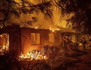 Cháy rừng ở bang California, sao Hollywood cầu nguyện cho sự an nguy