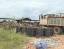 Lò than không phép tập kết lượng gỗ lậu lớn