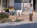 Vụ đến thăm đất, người khác đã xây nhà ở từ bao giờ: Thừa nhận sai phạm!