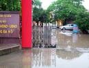 Hà Nội: Văn phòng Chính phủ yêu cầu kiểm tra, xử lý tố cáo sai phạm tại phường Đại Mỗ!