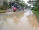 Quảng Bình: Dân khốn khổ vì đường biến thành ao!