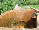"""Hàng trăm hộ dân dùng nước nhiễm phèn """"vàng như nghệ"""""""