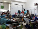 Đà Nẵng: Không để dịch sốt xuất huyết bùng phát trên diện rộng