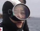 """Những """"nàng tiên cá"""" 60 tuổi tại Nhật Bản"""
