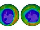 Tầng ozone của Trái Đất đang được lấp đầy trở lại