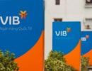 Cổ đông VIB sắp nhận gần 270 tỷ cổ tức bằng tiền mặt