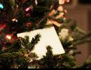 Món quà dành cho người đàn ông ghét Giáng sinh