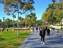 Bí quyết lựa chọn chương trình chuyển tiếp Đại học và Dự bị thạc sĩ tại Úc
