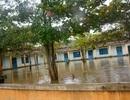 Quảng Nam: Ngày mai, học sinh nhiều nơi vẫn chưa thể đến trường