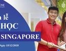 Nhận bằng của trường top 2% thế giới ngay tại Singapore