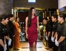 Hoa hậu Tiểu Vy xinh tươi tái xuất