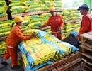PVFCCo điều chỉnh Kế hoạch sản xuất kinh doanh 2018 với lợi nhuận tăng cao