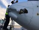 Máy bay chở khách Mexico vỡ đầu vì nghi đâm phải UAV trên không