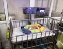 Bé gái sơ sinh bị bỏ rơi trước cổng chùa trong đêm lạnh