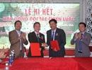 Lễ ký kết giữa Tập đoàn Hoàng Gia và Công ty TNHH Tuệ Lâm