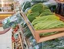 """Thời thực phẩm sạch lên ngôi, cửa hàng rau, quả an toàn.... """"hốt bạc"""""""