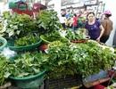 Đà Nẵng: Mưa lớn kéo dài, giá rau xanh tăng chóng mặt